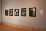 Installation View of Random Access Memory, Wriston Art Center Galleries, May 2012