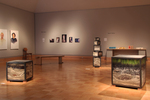 Installation View of To Fake Nature..., Wriston Art Center Galleries, May 2012 by Suzanne Craddock
