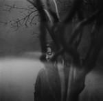 Untitled by Tess Gundersen