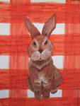 Bunny by Elizabeth Utter-Limon