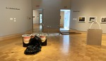 Cyclical Acts of Overconsumption - Installation View by Andrew (A.J.) James Bryant